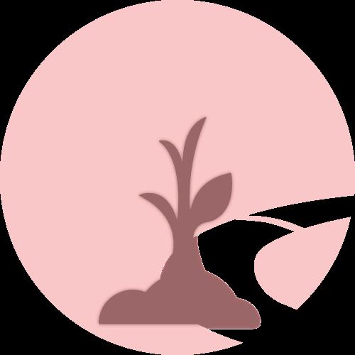 SEO Sapling Icon